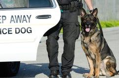 Cane poliziotto immagini stock libere da diritti