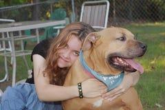 cane protetto sicuro di sicurezza Fotografia Stock