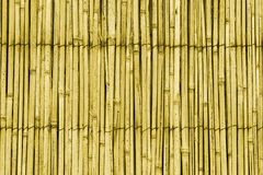 Cane roof pattern. The pattern of a cane-made roof Stock Photos