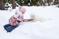 Cane samoiedo con una ragazza Immagini Stock