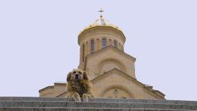 Cane senza tetto che si siede contro il fondo della chiesa, concetto di carità, benevolenza archivi video