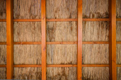 Cane shelter background Stock Image