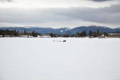 Cane Sledding sul lago congelato Fotografie Stock