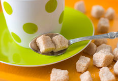 Cane sugar Stock Photography