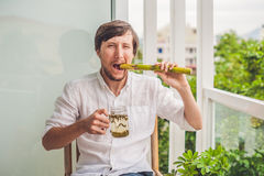 Cane sugar concept. The man jokingly eating sugar cane and drinks tea Royalty Free Stock Photography