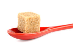 Cane sugar cube in spoon Stock Photography