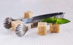 Cane sugar cubes with tongs Stock Photos