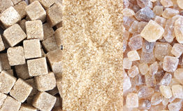 Cane sugar - three types collage Stock Images