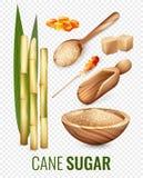 Cane Sugar Transparent Set Images libres de droits