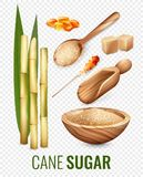 Cane Sugar Transparent Set illustration stock