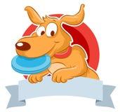 Cane sveglio con il frisbee Fotografie Stock