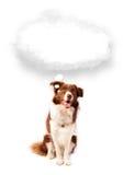 Cane sveglio con la bolla vuota della nuvola Immagini Stock