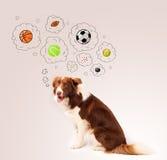 Cane sveglio con le palle nelle bolle di pensiero Immagine Stock Libera da Diritti