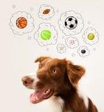 Cane sveglio con le palle nelle bolle di pensiero Immagini Stock