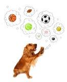 Cane sveglio con le palle nelle bolle di pensiero Immagini Stock Libere da Diritti