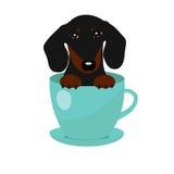 Cane sveglio del bassotto tedesco in tazza da the blu, illustrazione, insieme per modo del bambino Immagini Stock