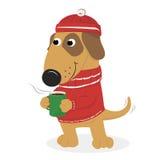 Cane sveglio del fumetto in un cappuccio e un maglione e un caffè Immagini Stock