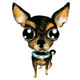 Cane sveglio disegnato a mano della chihuahua dell'acquerello di vettore Immagine Stock