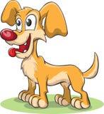 Cane sveglio giallo con andar in giroe della lingua Immagine Stock Libera da Diritti