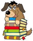 Cane sveglio sul mucchio dei libri Fotografia Stock Libera da Diritti
