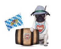 Cane tedesco bavarese del carlino Fotografie Stock Libere da Diritti