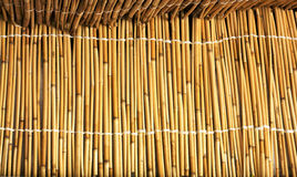 Cane texture Royalty Free Stock Photo