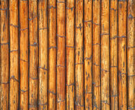 Cane texture Stock Images