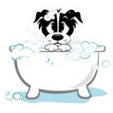 Cane triste che prende bagno illustrazione di stock