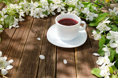 A caneca branca de chá em uma tabela de madeira, maçã floresce no backgr Foto de Stock