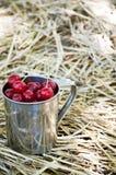 A caneca com cerejas está na palha Fotografia de Stock