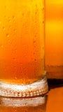 Caneca com cerveja fria Fotografia de Stock Royalty Free
