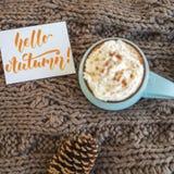 Caneca de café, de cacau ou de chocolate quente com chantiliy e canela no lenço com cone do pinho, outono do cartão olá! foto de stock