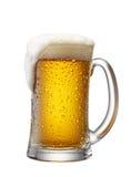 Caneca de cerveja fotografia de stock royalty free