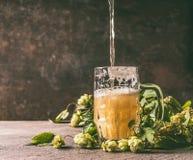 Caneca de cerveja em uma tabela rústica com uma videira e os cones dos lúpulos oposto a uma parede escura, vista dianteira imagens de stock