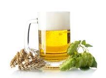 Caneca de cerveja na tabela com cones de lúpulo, orelhas do trigo no branco Foto de Stock Royalty Free
