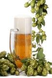 Caneca de cerveja, tambor de cerveja de lúpulos verdes fotografia de stock royalty free