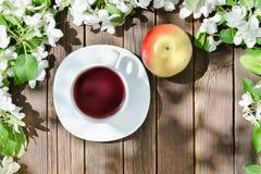 Caneca de chá e de maçã madura entre a maçã da flor em um backgr de madeira Fotos de Stock