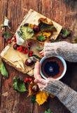Caneca de chá morno do outono fotos de stock royalty free