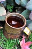 Caneca de chá morno dos rooibos foto de stock