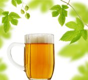Caneca e lúpulos de cerveja Fotografia de Stock