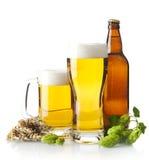 Canecas de cerveja na tabela com cones de lúpulo, orelhas do trigo no branco Fotografia de Stock