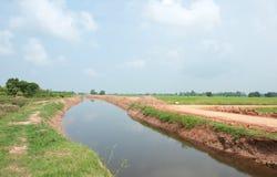 Canel in landwirtschaftlichem von Thailand Stockbilder