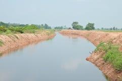 Canel in landwirtschaftlichem von Thailand Lizenzfreies Stockbild