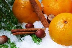 Canela de la avellana de la nieve de las mandarinas Fotos de archivo