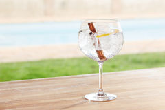 Canela e de gim e de tônico do zimbro cocktail por uma associação fora Imagens de Stock Royalty Free