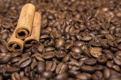 Canela en los granos de café imagenes de archivo