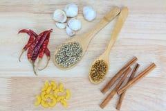 Canela, pimientas secadas, semillas de coriandro, pimienta blanca, pastas de los macarrones Fotos de archivo libres de regalías