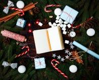 Canela v del cono del pino de las ramas del abeto de la composición del Año Nuevo de la Navidad Imagen de archivo libre de regalías