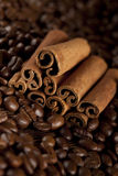 Canella sticks and coffee beans Stock Photos