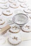 Canestrelli. Traditional italian cookies with sugar powder Royalty Free Stock Photography